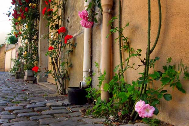 rosiers-place-notre-dame-cluny