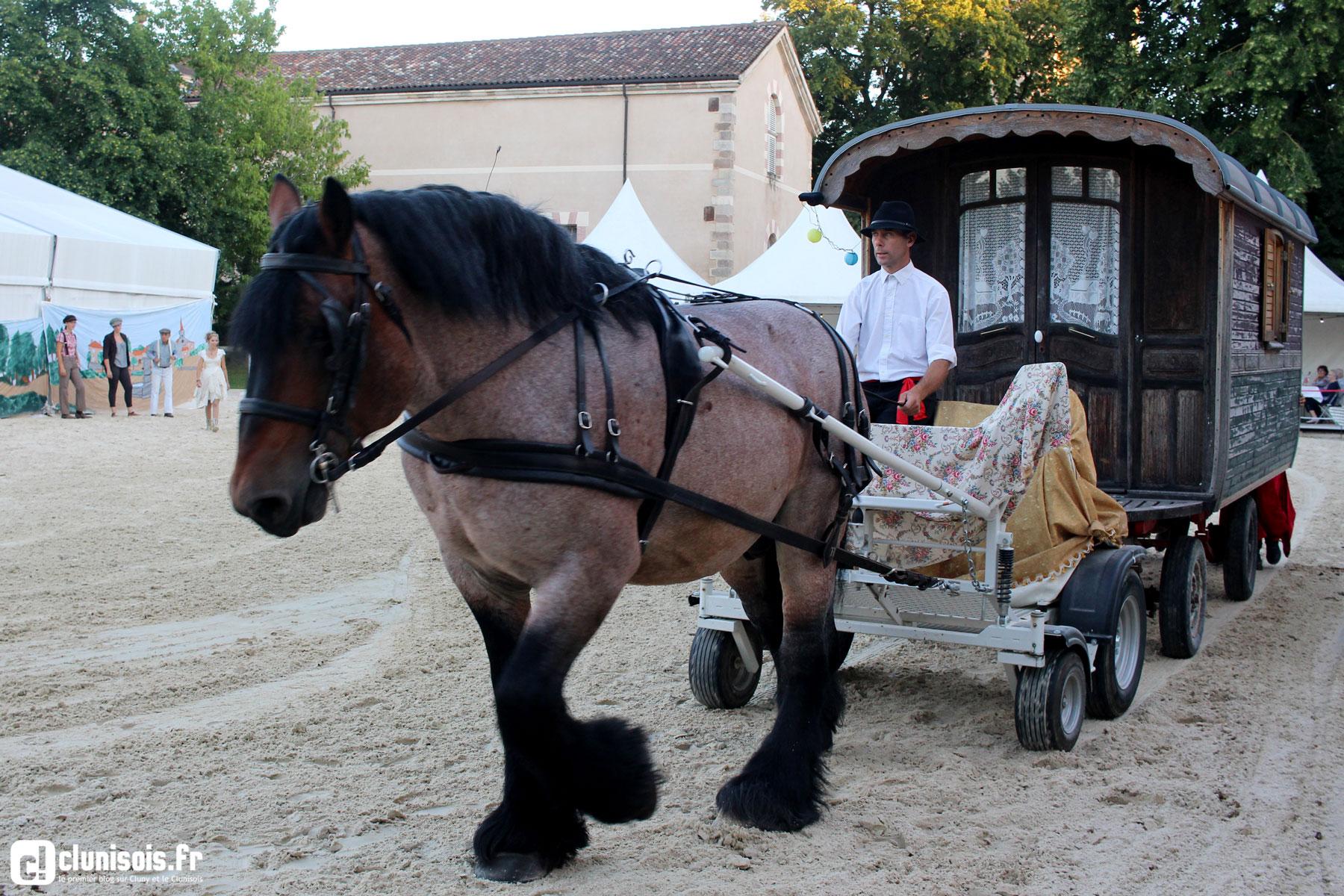 cabaret-equestre-haras-cluny-ete-2016-02