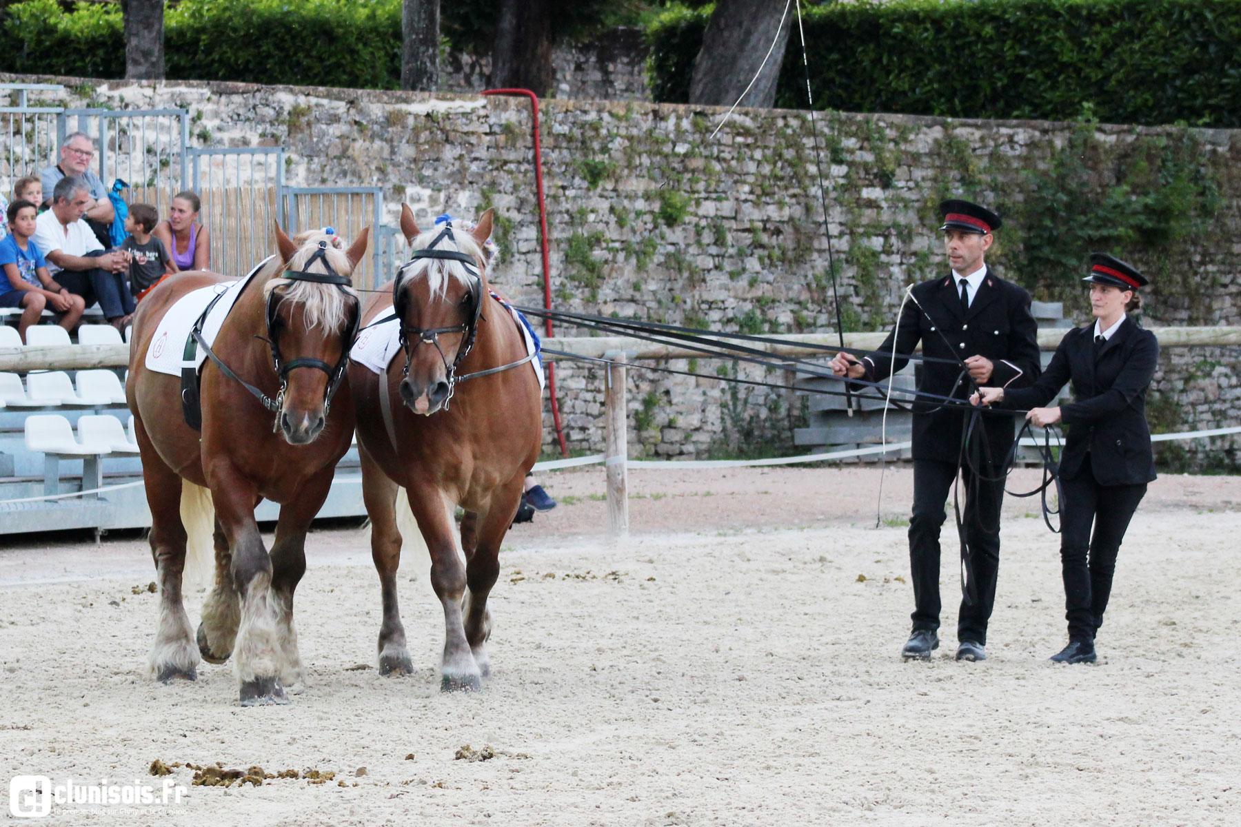 cabaret-equestre-haras-cluny-ete-2016-07