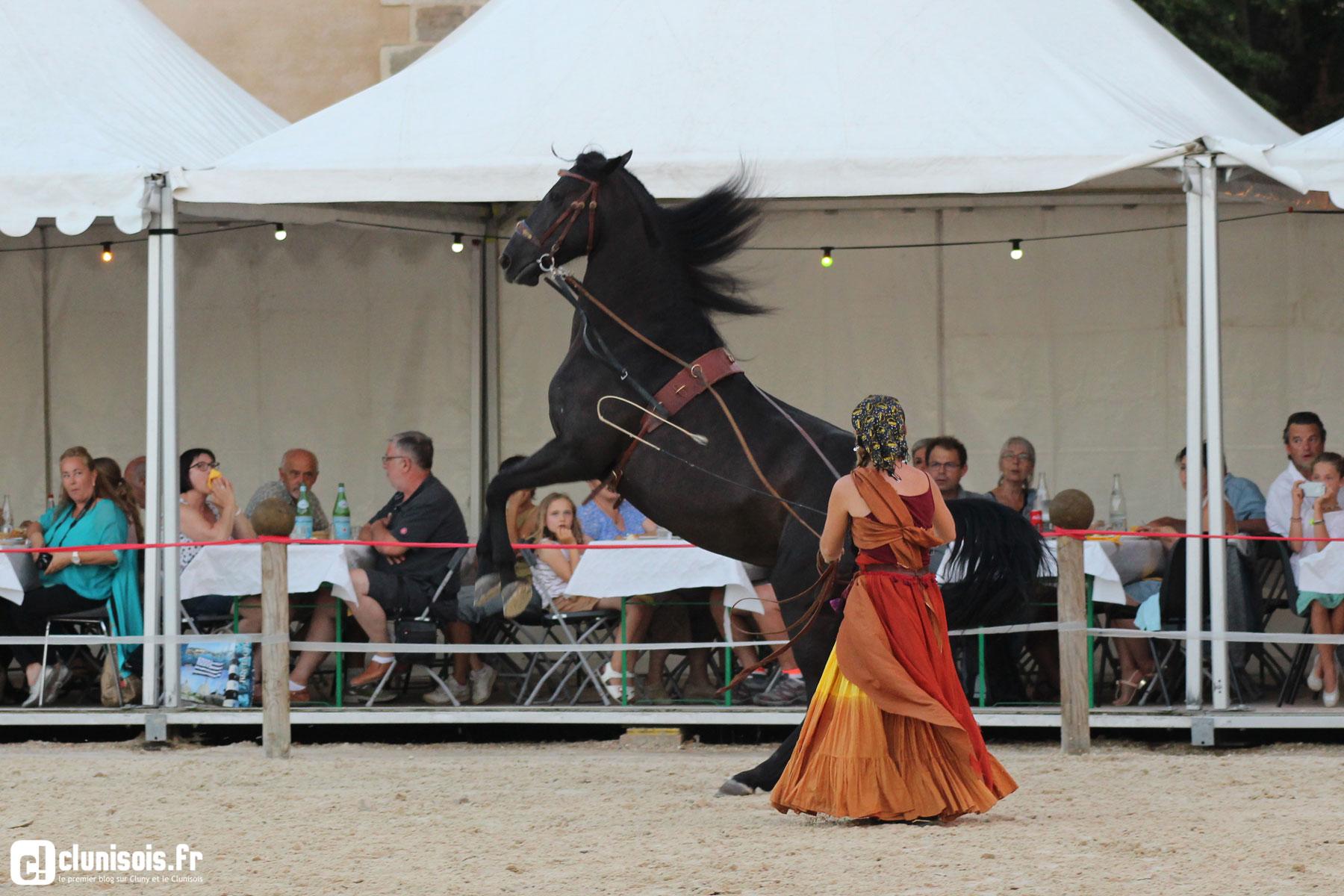 cabaret-equestre-haras-cluny-ete-2016-08